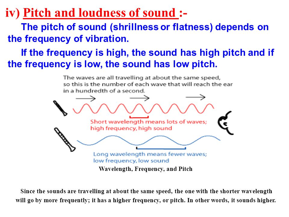 iv) Pitch and loudness of sound :- The pitch of sound (shrillness or flatness) depends on the frequency of vibration. If the frequency is high, the so