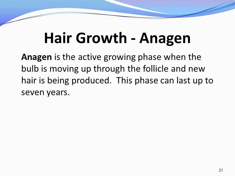 Hair Growth - Anagen Anagen is the active growing phase when the bulb is moving up through the follicle and new hair is being produced. This phase can