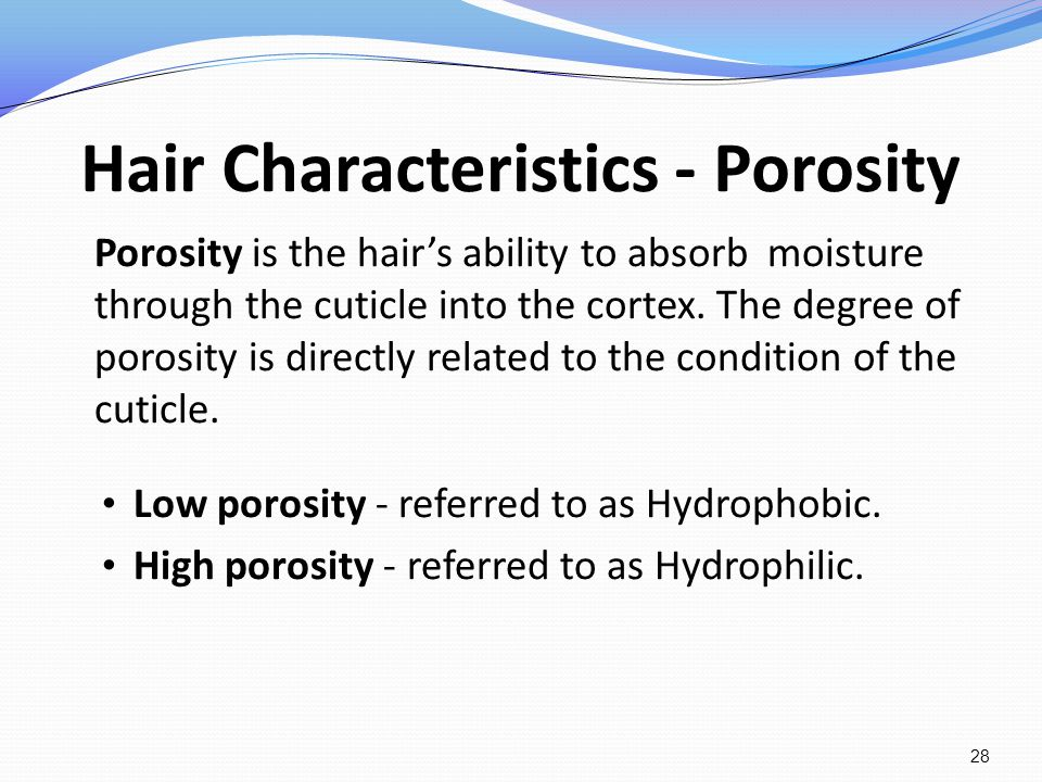 Hair Characteristics - Porosity Porosity is the hairs ability to absorb moisture through the cuticle into the cortex. The degree of porosity is direct