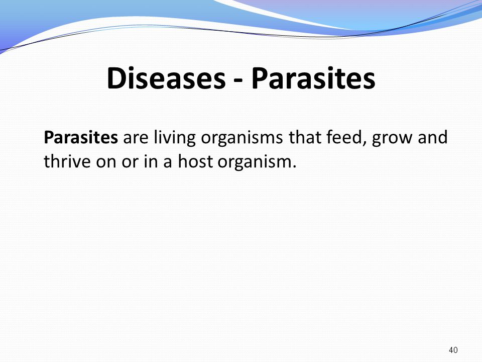 Diseases - Parasites Parasites are living organisms that feed, grow and thrive on or in a host organism. 40