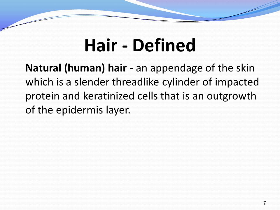Hair - Defined Natural (human) hair - an appendage of the skin which is a slender threadlike cylinder of impacted protein and keratinized cells that i