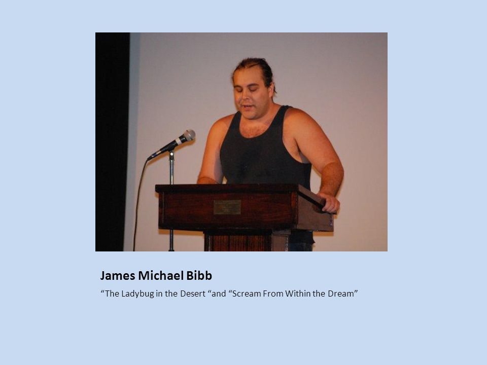 James Michael Bibb The Ladybug in the Desert and Scream From Within the Dream