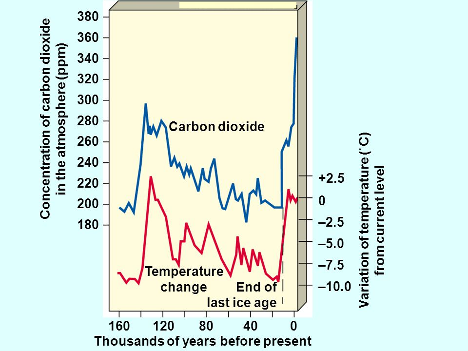 Carbon dioxide Temperature change End of last ice age 16012080400 Thousands of years before present Concentration of carbon dioxide in the atmosphere (ppm) 180 200 220 240 260 280 300 320 340 360 380 –10.0 –7.5 –5.0 –2.5 0 +2.5 Variation of temperature (˚C) from current level