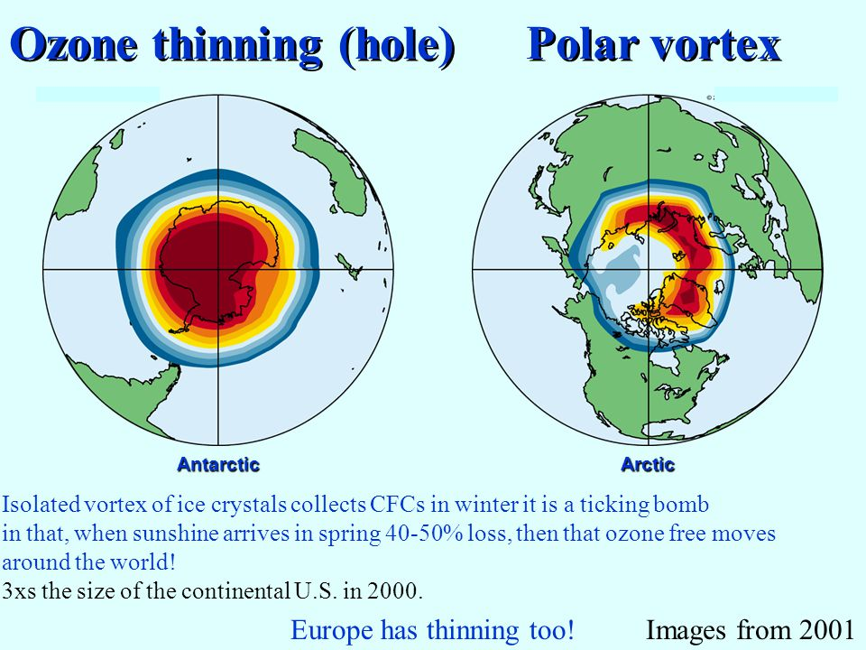 Ozone thinning (hole) Polar vortex AntarcticArctic Europe has thinning too!Images from 2001 Isolated vortex of ice crystals collects CFCs in winter it is a ticking bomb in that, when sunshine arrives in spring 40-50% loss, then that ozone free moves around the world.