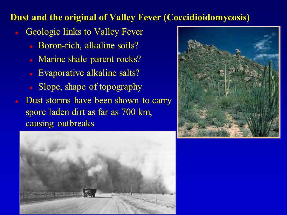 Dust and the original of Valley Fever (Coccidioidomycosis) Geologic links to Valley Fever Boron-rich, alkaline soils? Marine shale parent rocks? Evapo