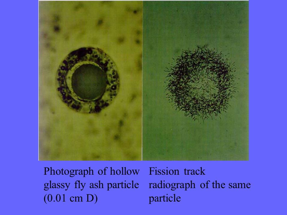 Photograph of hollow glassy fly ash particle (0.01 cm D) Fission track radiograph of the same particle