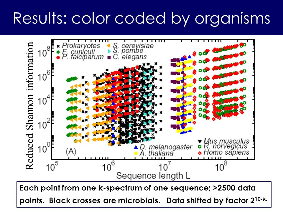Reduced Shannon information Results: color coded by organisms Each point from one k-spectrum of one sequence; >2500 data points. Black crosses are mic