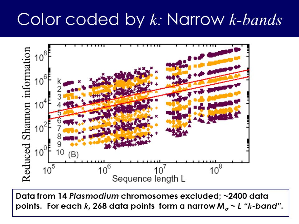 Data from 14 Plasmodium chromosomes excluded; ~2400 data points. For each k, 268 data points form a narrow M ~ L k -band. Color coded by k: Narrow k-b