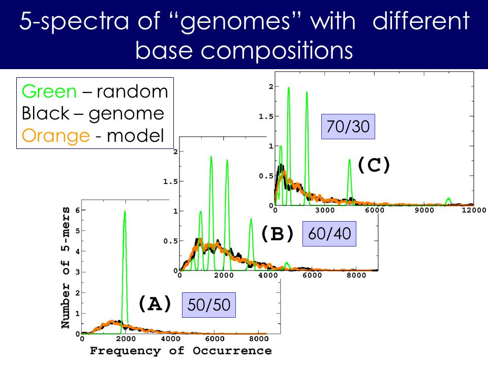 5-spectra of genomes with different base compositions 50/50 60/40 Green – random Black – genome Orange - model 70/30