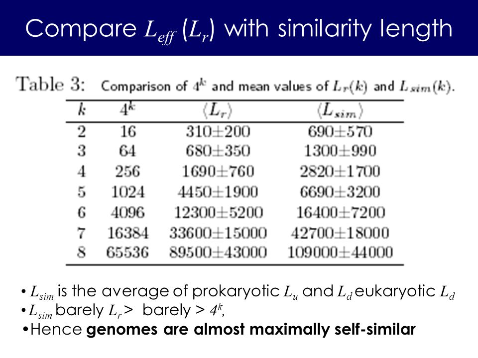 Compare L eff ( L r ) with similarity length L sim is the average of prokaryotic L u and L d eukaryotic L d L sim barely L r > barely > 4 k, Hence gen