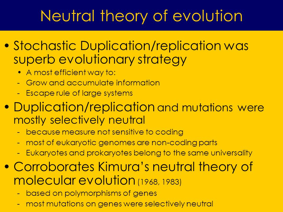 Stochastic Duplication/replication was superb evolutionary strategy A most efficient way to: -Grow and accumulate information -Escape rule of large systems Duplication/replication and mutations were mostly selectively neutral -because measure not sensitive to coding -most of eukaryotic genomes are non-coding parts -Eukaryotes and prokaryotes belong to the same universality Corroborates Kimuras neutral theory of molecular evolution (1968, 1983) -based on polymorphisms of genes -most mutations on genes were selectively neutral Neutral theory of evolution