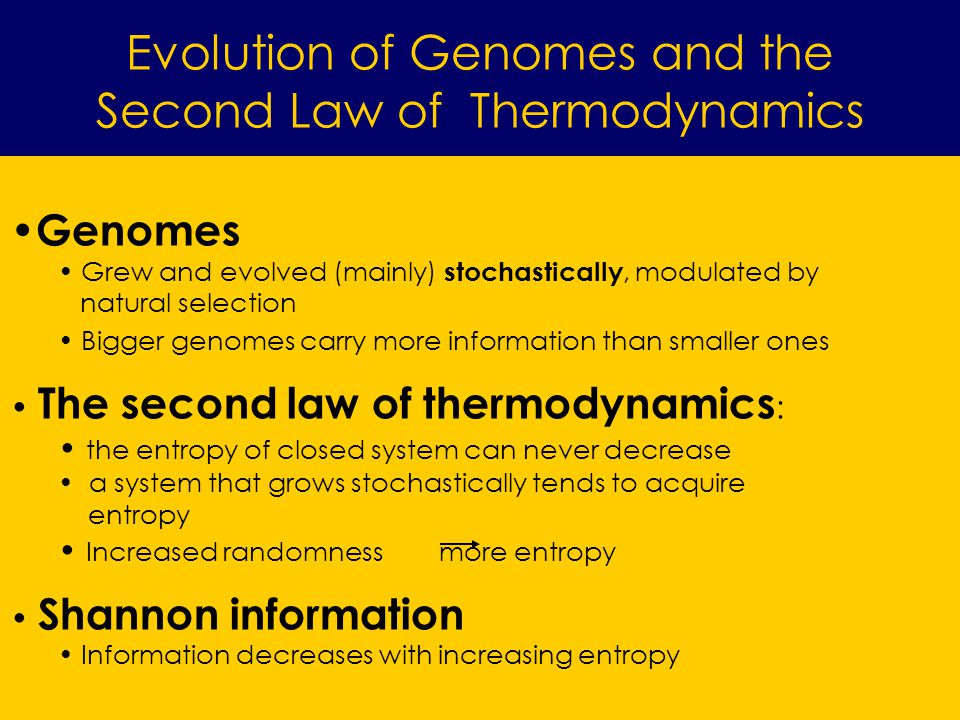 Evolution of Genomes and the Second Law of Thermodynamics Genomes Grew and evolved (mainly) stochastically, modulated by natural selection Bigger genomes carry more information than smaller ones The second law of thermodynamics : the entropy of closed system can never decrease a system that grows stochastically tends to acquire entropy Increased randomness more entropy Shannon information Information decreases with increasing entropy
