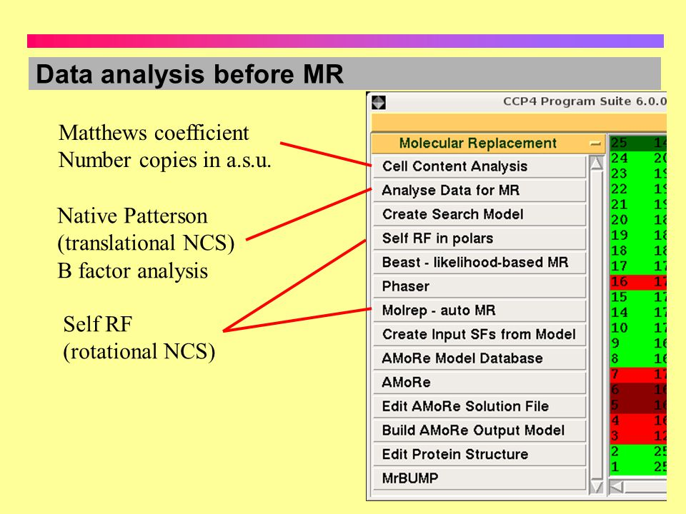Data analysis before MR Matthews coefficient Number copies in a.s.u. Native Patterson (translational NCS) B factor analysis Self RF (rotational NCS)