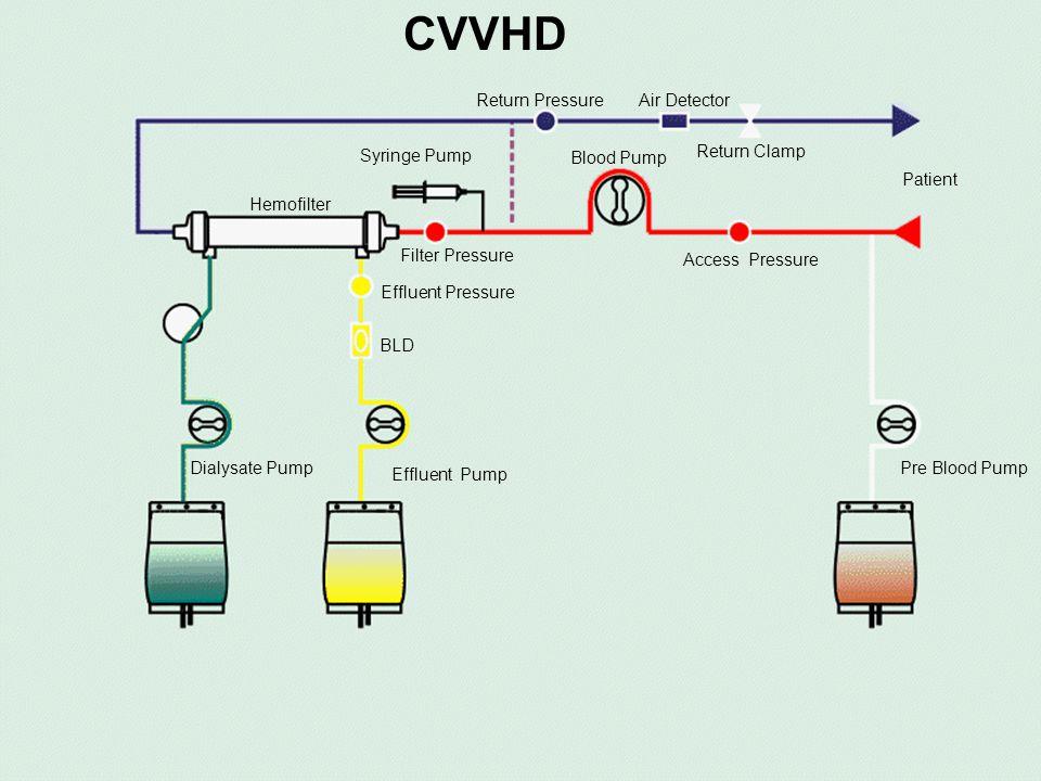 © CVVHD Return Pressure Air Detector Return Clamp Access Pressure Blood Pump Syringe Pump Filter Pressure Hemofilter Patient Effluent Pump Dialysate P