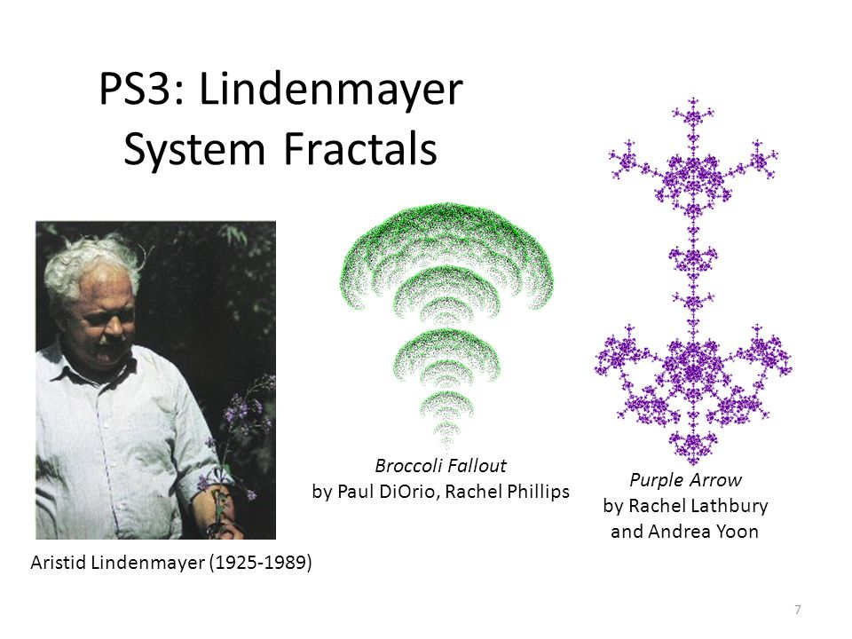 PS3: Lindenmayer System Fractals 7 Aristid Lindenmayer (1925-1989) Purple Arrow by Rachel Lathbury and Andrea Yoon Broccoli Fallout by Paul DiOrio, Rachel Phillips