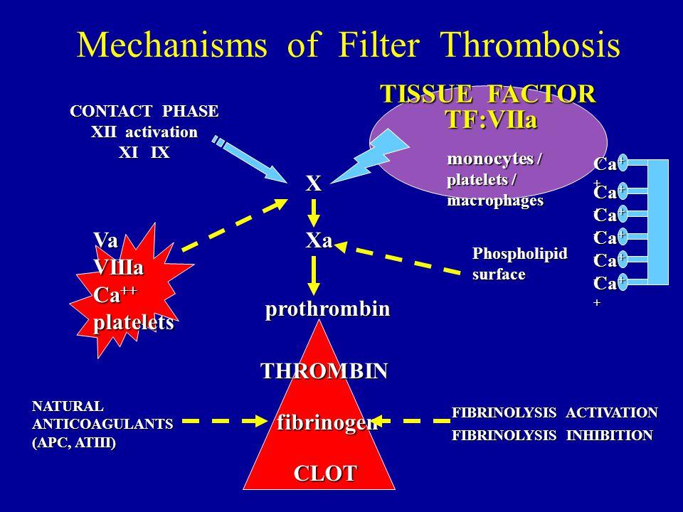 Mechanisms of Filter Thrombosis CONTACT PHASE XII activation XI IX TISSUE FACTOR TF:VIIa THROMBIN fibrinogen prothrombin XaVaVIIIa Ca ++ platelets CLO