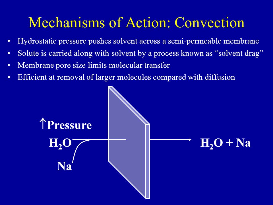 Mechanisms of Action: Convection Hydrostatic pressure pushes solvent across a semi-permeable membrane Solute is carried along with solvent by a proces