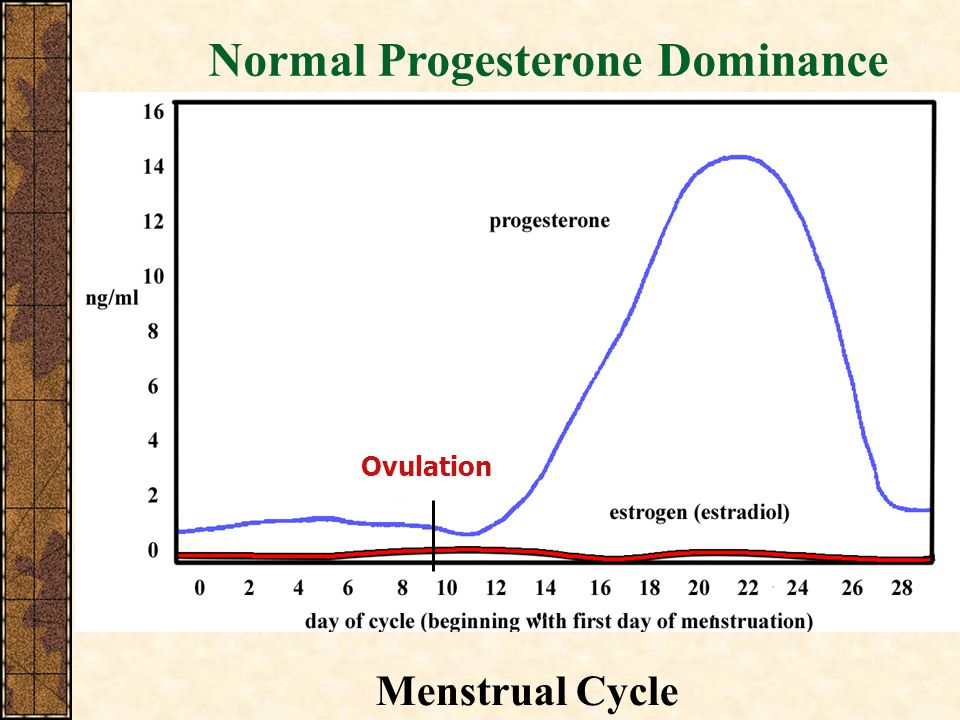 Normal Progesterone Dominance Ovulation Menstrual Cycle