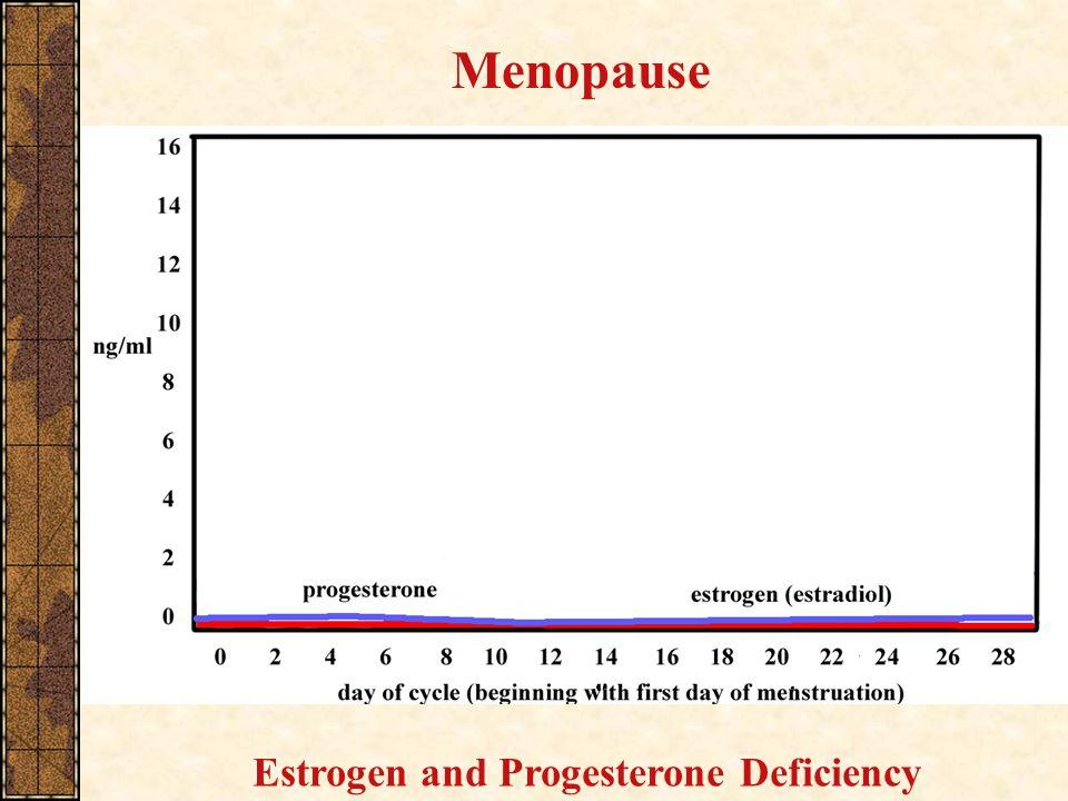 Menopause Estrogen and Progesterone Deficiency