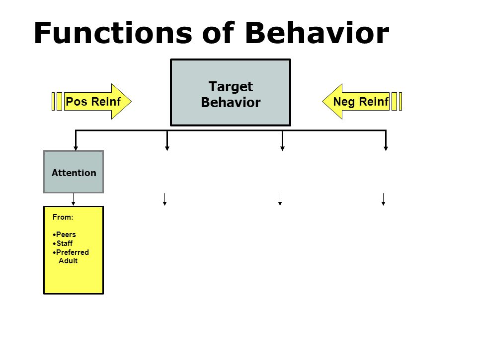 Target Behavior Attention From: Peers Staff Preferred Adult Pos ReinfNeg Reinf Functions of Behavior
