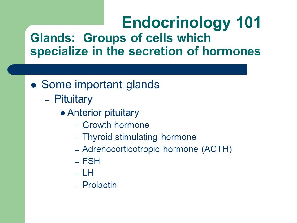 Endocrinology 101 Glands: Groups of cells which specialize in the secretion of hormones Some important glands – Pituitary Anterior pituitary – Growth