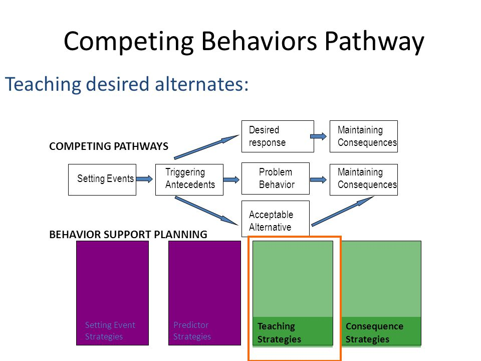 Competing Behaviors Pathway Teaching desired alternates: Triggering Antecedents Setting Events Maintaining Consequences Maintaining Consequences Probl
