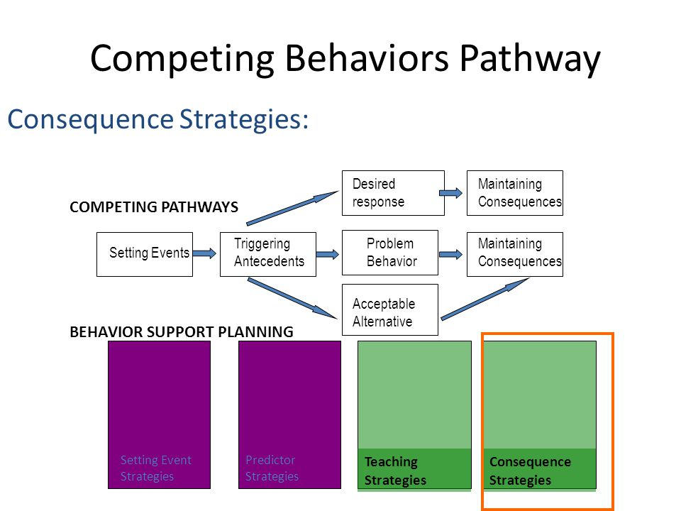 Competing Behaviors Pathway Consequence Strategies: Triggering Antecedents Setting Events Maintaining Consequences Maintaining Consequences Problem Be