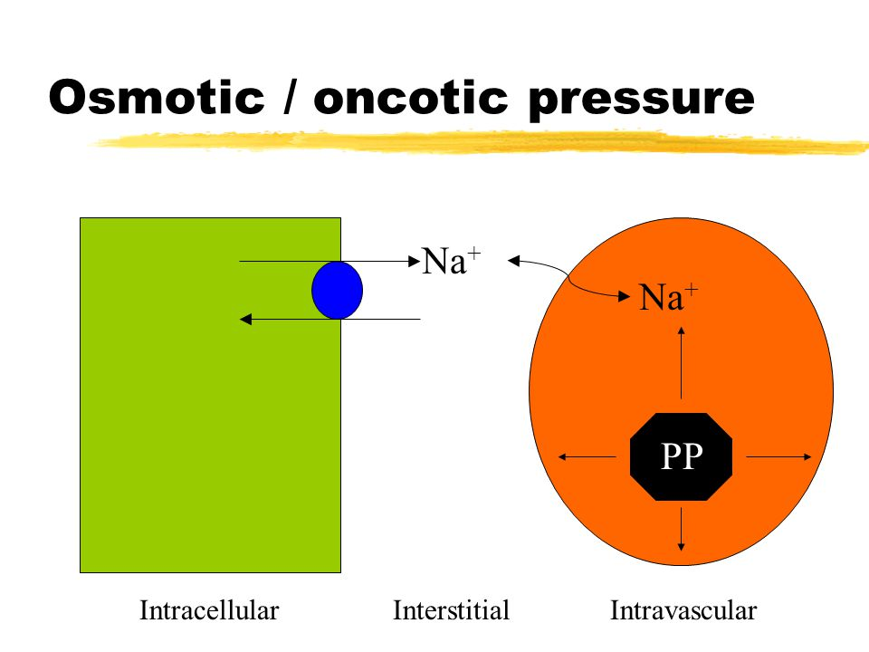 Osmotic / oncotic pressure Na + PP IntracellularInterstitialIntravascular