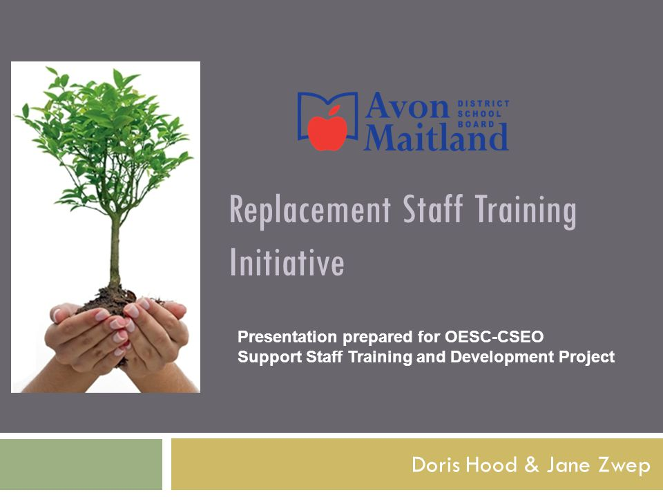 Replacement Staff Training Initiative Doris Hood & Jane Zwep Presentation prepared for OESC-CSEO Support Staff Training and Development Project