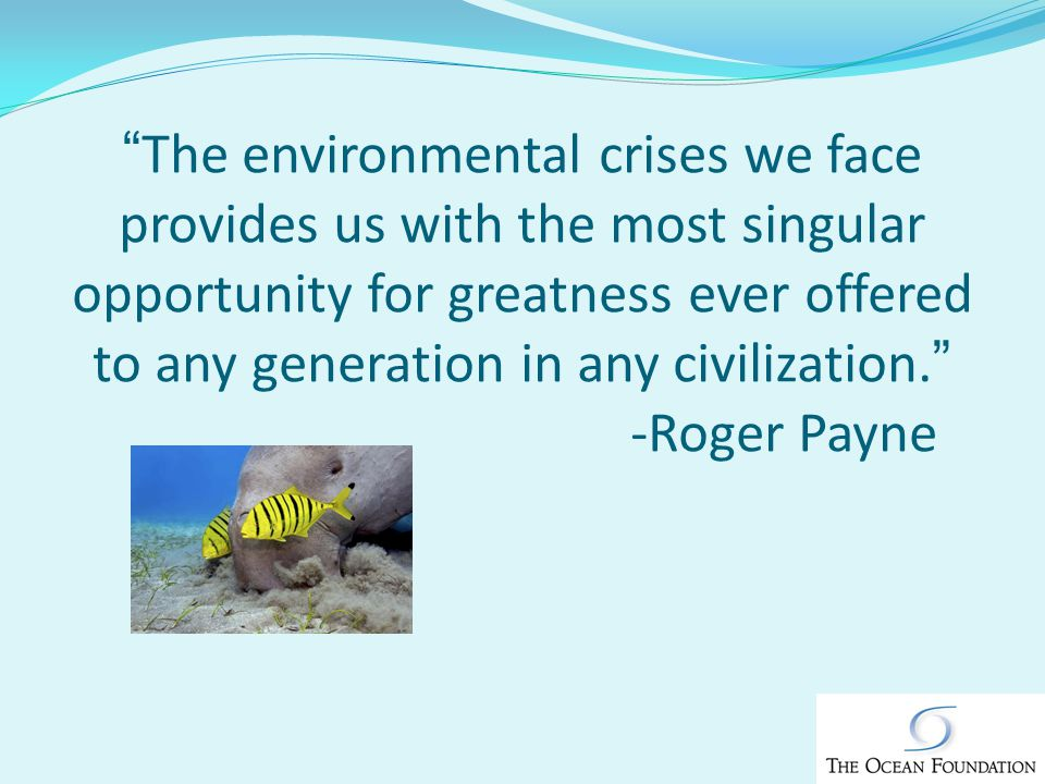 The environmental crises we face provides us with the most singular opportunity for greatness ever offered to any generation in any civilization.