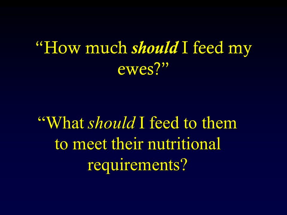 How much should I feed my ewes What should I feed to them to meet their nutritional requirements