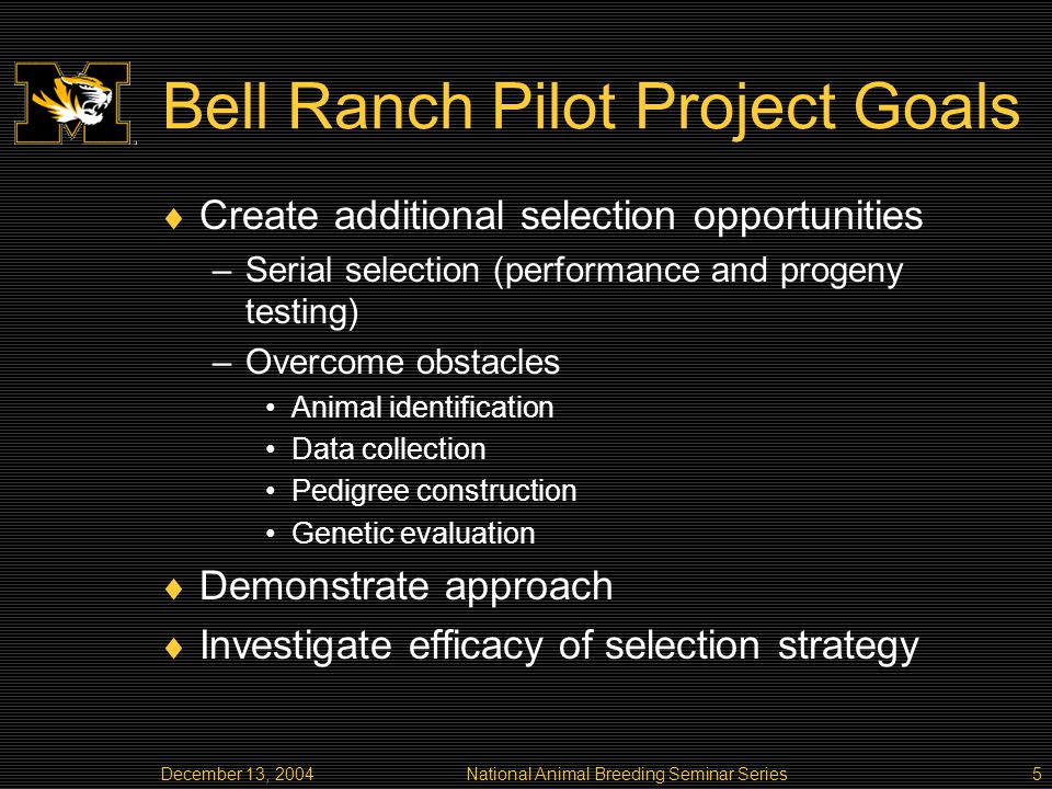 December 13, 2004National Animal Breeding Seminar Series5 Bell Ranch Pilot Project Goals Create additional selection opportunities –Serial selection (performance and progeny testing) –Overcome obstacles Animal identification Data collection Pedigree construction Genetic evaluation Demonstrate approach Investigate efficacy of selection strategy
