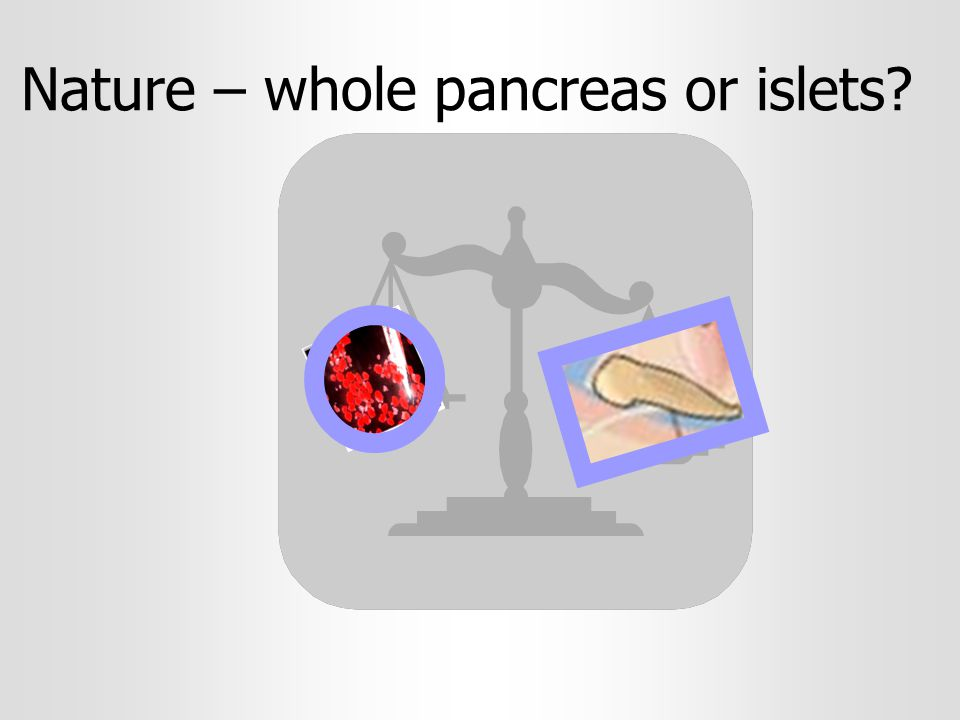 Nature – whole pancreas or islets