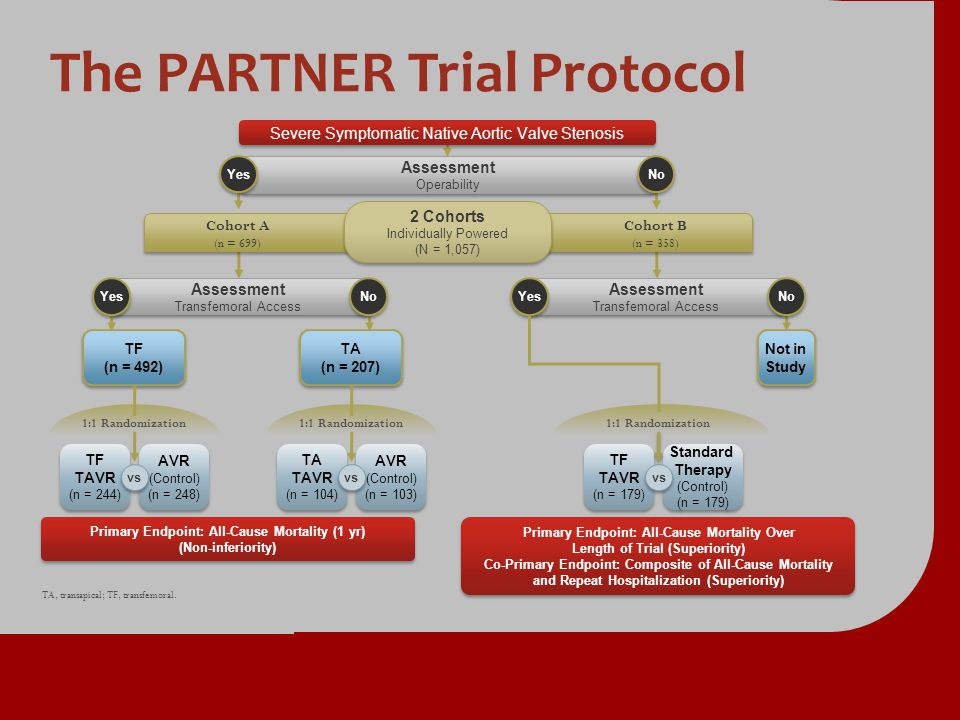 The PARTNER Trial Protocol Not in Study Assessment Transfemoral Access Assessment Transfemoral Access Yes No Primary Endpoint: All-Cause Mortality Ove
