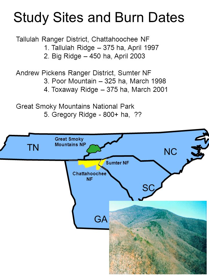 Tallulah Ranger District, Chattahoochee NF 1. Tallulah Ridge – 375 ha, April