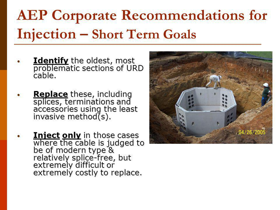 AEP Corporate Recommendations for Injection – Short Term Goals Identify the oldest, most problematic sections of URD cable.
