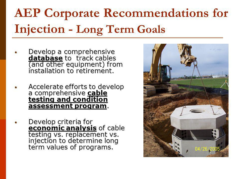 AEP Corporate Recommendations for Injection - Long Term Goals Develop a comprehensive database to track cables (and other equipment) from installation to retirement.