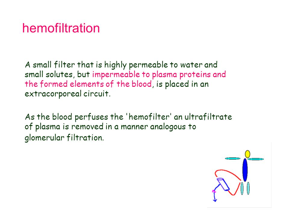 hemofiltration A small filter that is highly permeable to water and small solutes, but impermeable to plasma proteins and the formed elements of the b