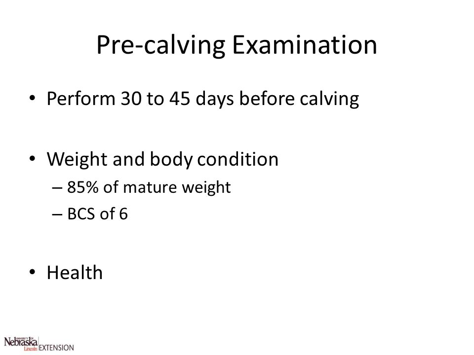 Pre-calving Examination Perform 30 to 45 days before calving Weight and body condition – 85% of mature weight – BCS of 6 Health