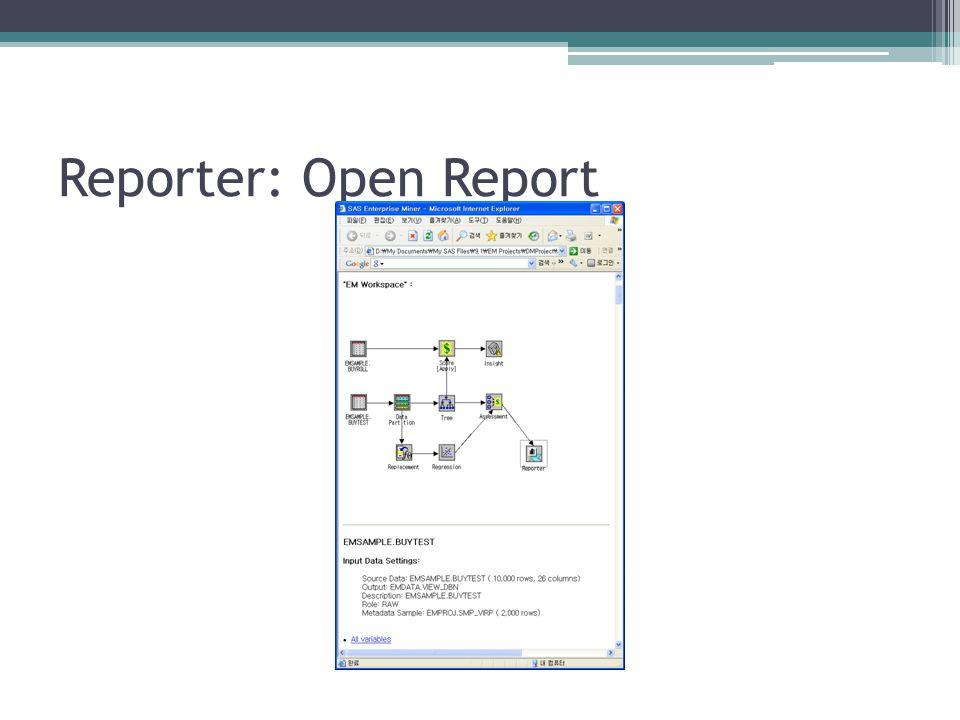 Reporter: Open Report