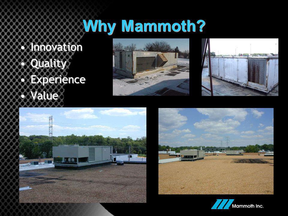 Why Mammoth? InnovationInnovation QualityQuality ExperienceExperience ValueValue