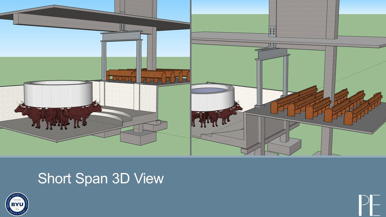 Short Span 3D View