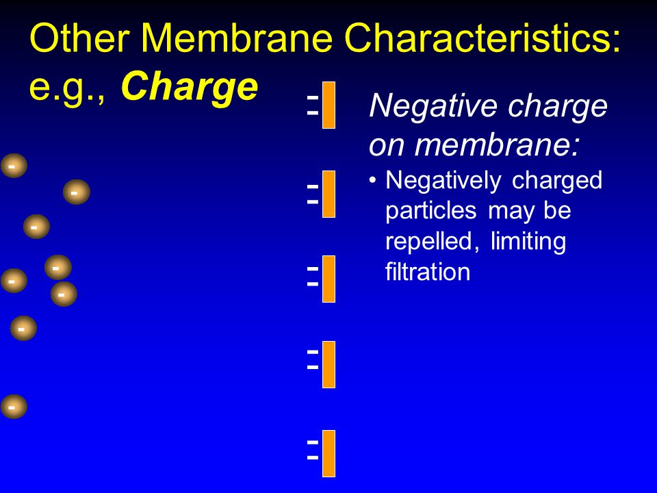 - - - - - - - - - - - - - - - - - - Other Membrane Characteristics: e.g., Charge Negative charge on membrane: Negatively charged particles may be repe