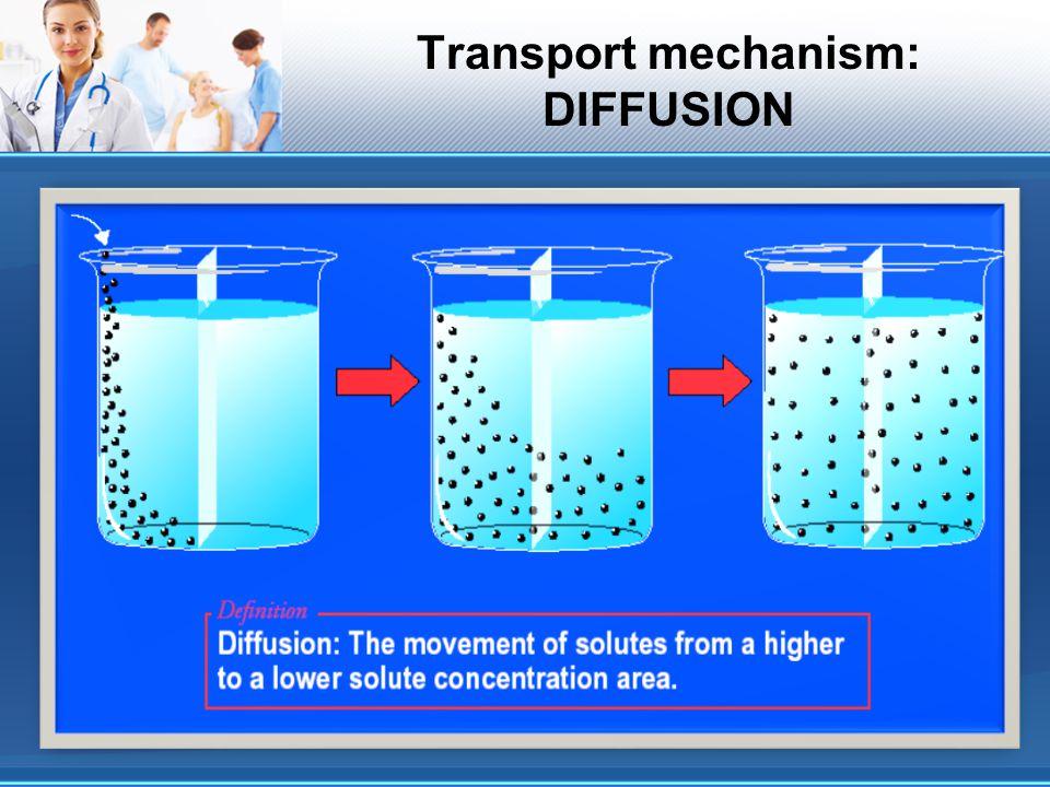 Transport mechanism: DIFFUSION