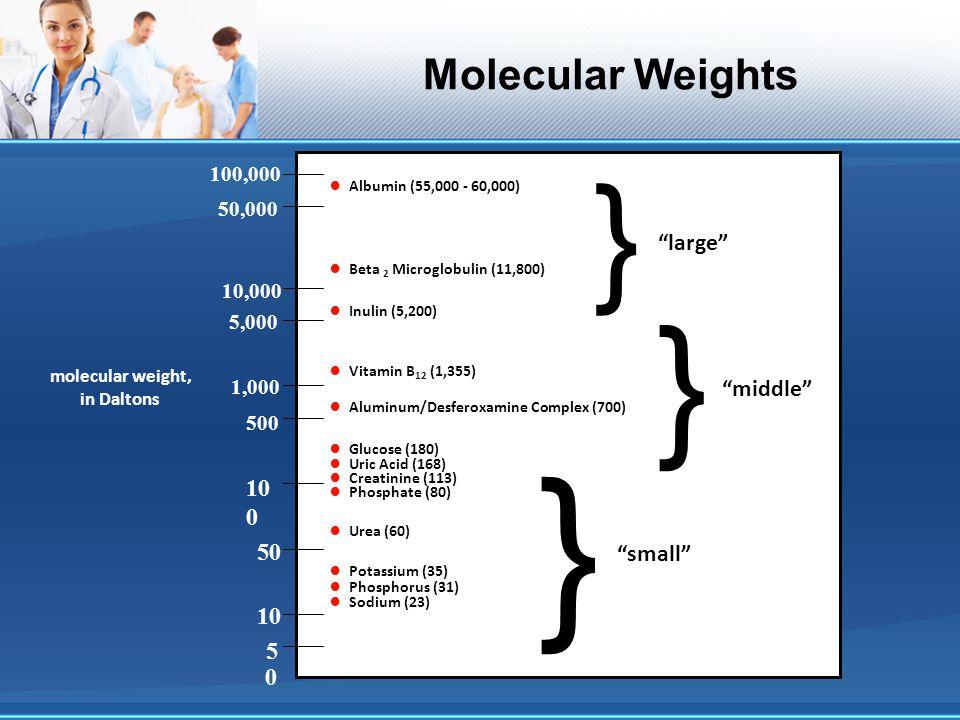 Molecular Weights Albumin (55,000 - 60,000) Beta 2 Microglobulin (11,800) Inulin (5,200) Vitamin B 12 (1,355) Aluminum/Desferoxamine Complex (700) Glu