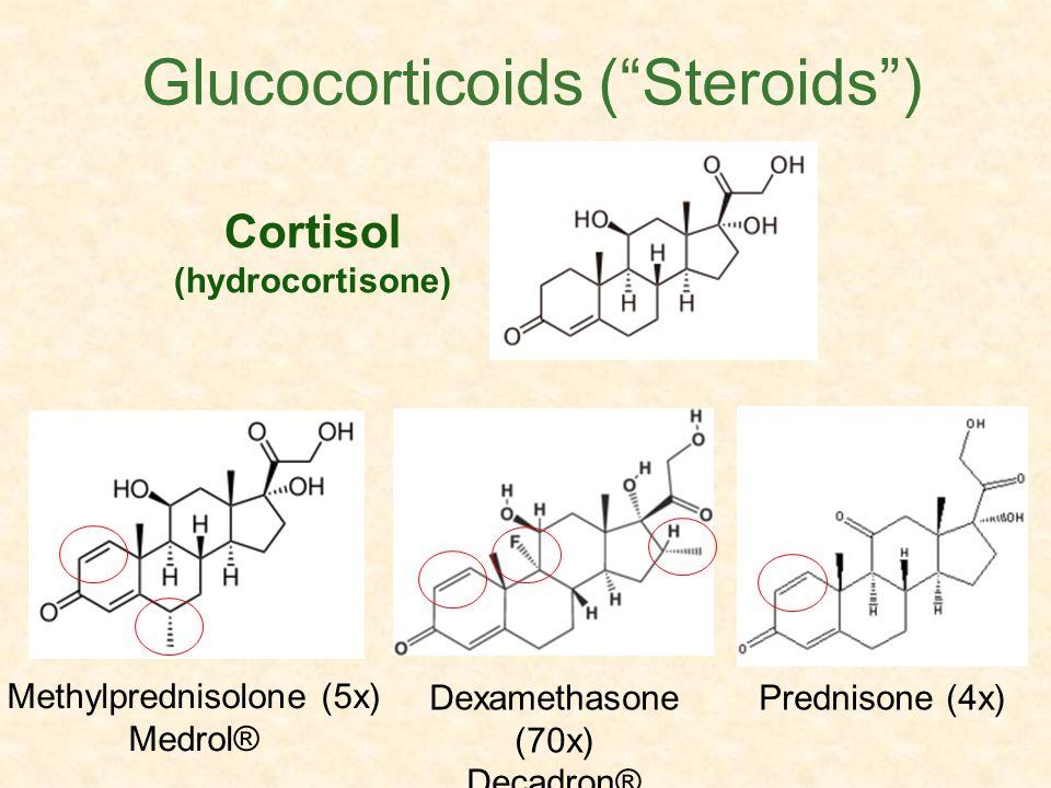 Cortisol (hydrocortisone) Dexamethasone (70x) Decadron® Methylprednisolone (5x) Medrol® Glucocorticoids (Steroids) Prednisone (4x)