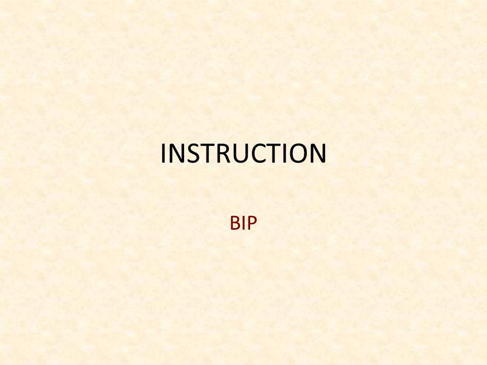 INSTRUCTION BIP