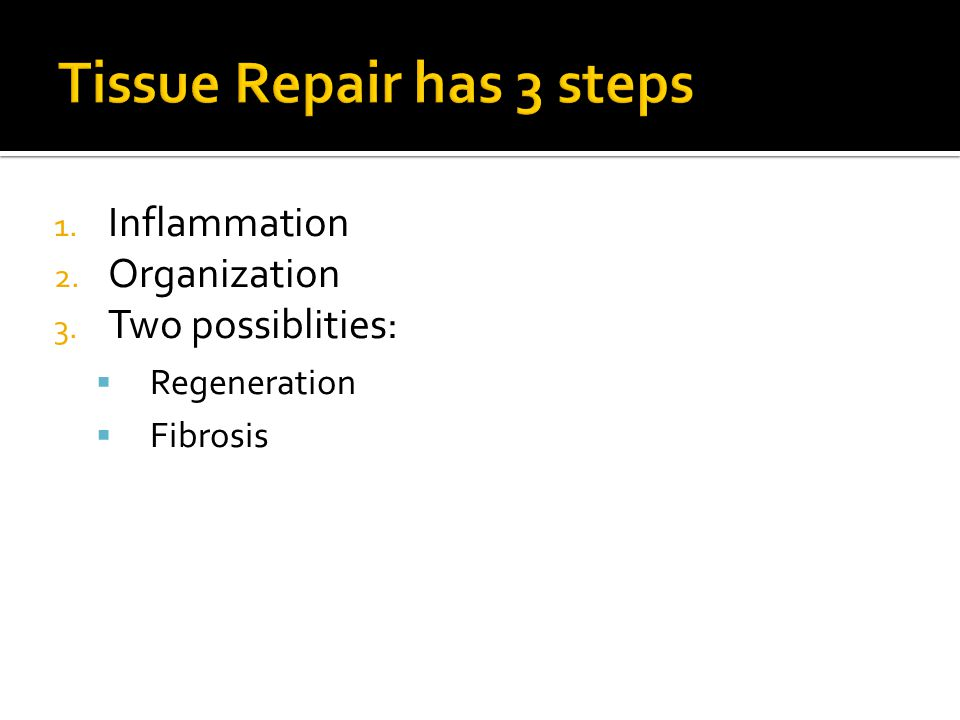 1. Inflammation 2. Organization 3. Two possiblities: Regeneration Fibrosis