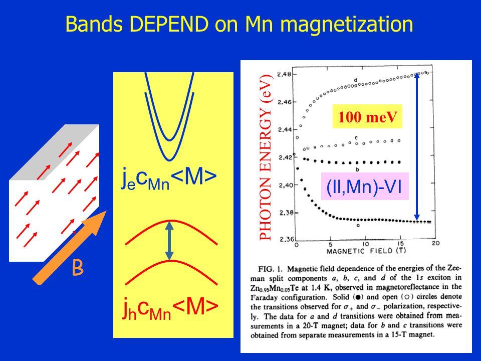 =0 L j e c Mn j h c Mn B 100 meV PHOTON ENERGY (eV) (II,Mn)-VI Bands DEPEND on Mn magnetization