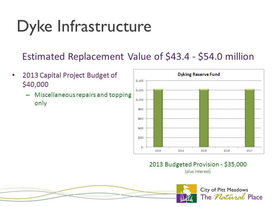 Dyke Infrastructure 2013 Capital Project Budget of $40,000 – Miscellaneous repairs and topping only Estimated Replacement Value of $43.4 - $54.0 million 2013 Budgeted Provision - $35,000 (plus interest)